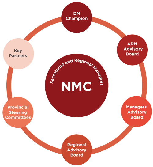 NMC Governance Structure